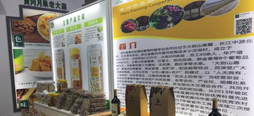 黄冈市举行商旅文体康融合发展暨绿色健康食品产业推介会