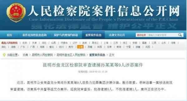 孙小果被审查逮捕 孙小果等9人恶势力犯罪集团被审查逮捕